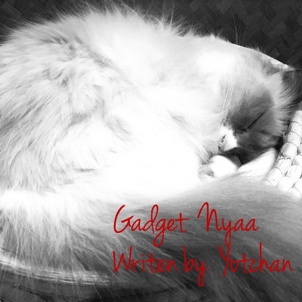 Gadget Nyaa | Apple・ガジェットブログ